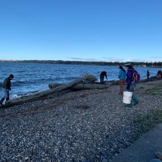 Fleißige Müllsammler in Birch Bay, WA am Neujahrsmorgen